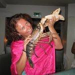 Самый большой омар, которого я съела! Еще жив!