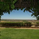Photo de RN Estate Vineyard and Winery