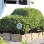 Шедевры садовника - машинка