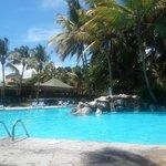 area de piscinas