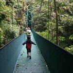 cloud forest tour Monteverde