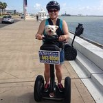 Biscuit, 13 years young, had a bucket list wish of riding a segway