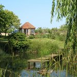 Summerhouse and pond