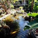 angolo del lussureggiante giardino