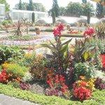 Beautiful gardens!!!