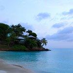 cocos view