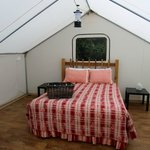 Tent/Cabin Bed