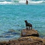 Playa Mitjorn