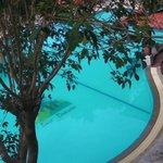 HUGE pool - very clean