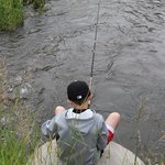 Fishing for trout...