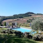 A pool in the Tuscany countryside