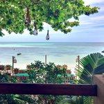Meravigliosa vista dalla terrazza del ristorante del resort