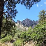 Aguirre Springs Campground Organ NM