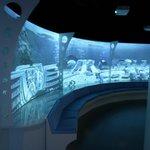 """On frôle le parc d'attractions à """"thème"""" mais pas la frénésie au niveau des aquariums"""