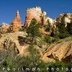 Stone Canyon's Beautiful Surroundings.