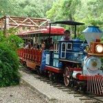 San Antonio Zoo Eagle Train