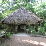 Maya House (traditional Maya living)