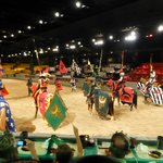 Knights of the realm preparing to joust