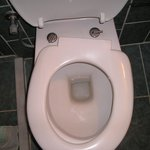 Broken toilet seat fixed once then went again