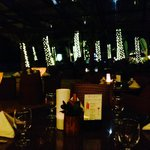 DINING UNDER THE STARS AND LIGHTED COCONUT TREES