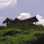 Nature Inn