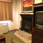 Fireplace and firelog.