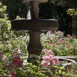 Brunnen im Rosengarten