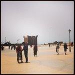 Excursion possible à Essaouira et plein d'autres endroits.