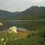 Reservoir near Lakeside Guest House