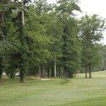 Parc golf