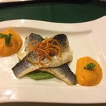 Seabass with carrot and pea purée