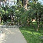 Piscina e Giardino del Park Hotel Terme Mediterraneo