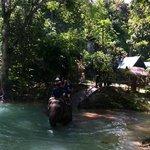 Elephant ride at the bottom falls