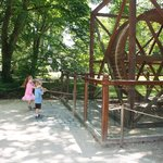 Wheel In The DaVinci Garden
