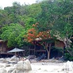 Haad Tien cottages on the beach
