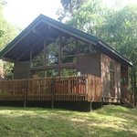 Our silver birch lodge, number 28