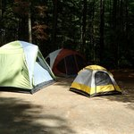 campsite 39