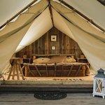 Safari Tent No.2