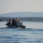 Boat cruise on the Zambezi