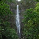 Kalalau Trail to the Waterfall