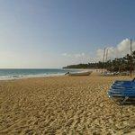 Playa 8am