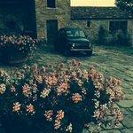 Photo de Agriturismo Il Poggio alle Ville