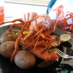 Lobster Boil, with potatoes, corn on the cob, and clams