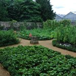 The Kitchen Gardens at Kew