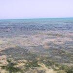 les tons de la mer
