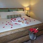 Honeymoon suite!