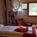 Our room. You can't miss the reindeer on the curtain.