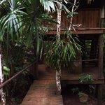 Treehouse Enterance