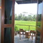 Balcony overlooking padi fields