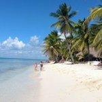 Saona Strand (Ausflug mit Dressler)